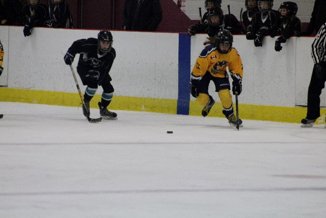 Cripps_Tournament_vs_cambridge_34.JPG