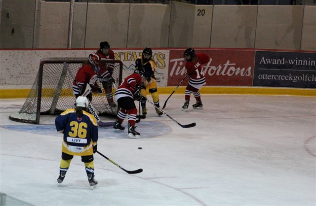 Gretzky_Tournament_Feb_20_vs_Brantford_21.JPG