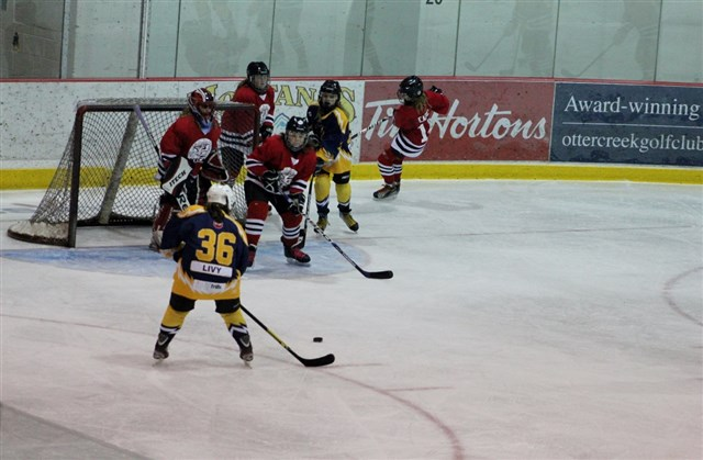 Gretzky_Tournament_Feb_20_vs_Brantford_22.JPG