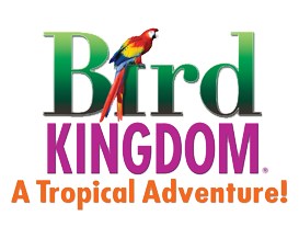 Bird Kingdom